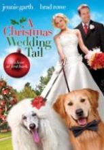 Bir Noelde Evlilik Hikayesi 2011 filmini izle